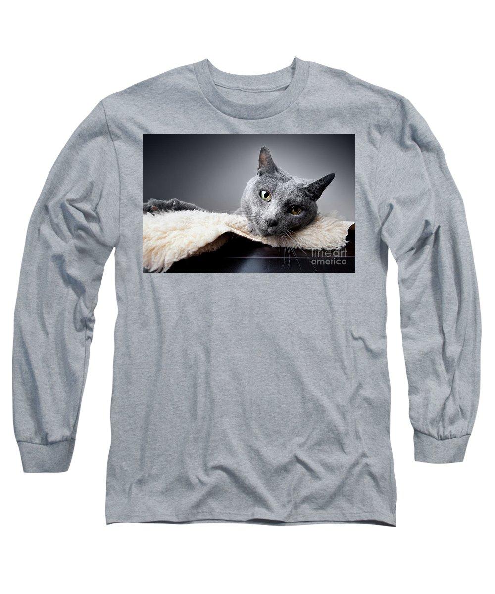 Russian Long Sleeve T-Shirt featuring the photograph Russian Blue Cat by Nailia Schwarz