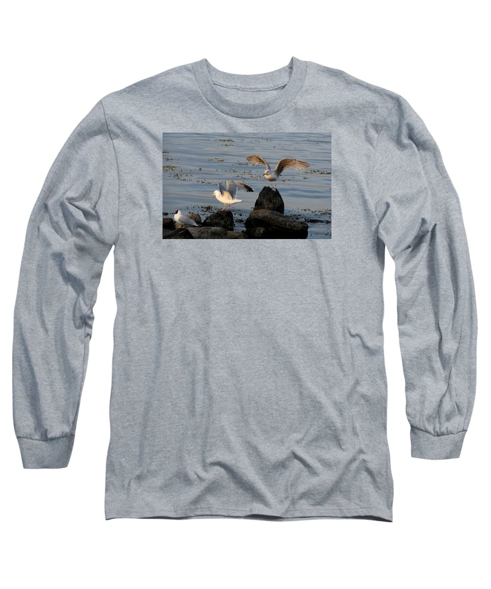 Birds Long Sleeve T-Shirt featuring the photograph Seaguls 3 by Cristina Rettegi