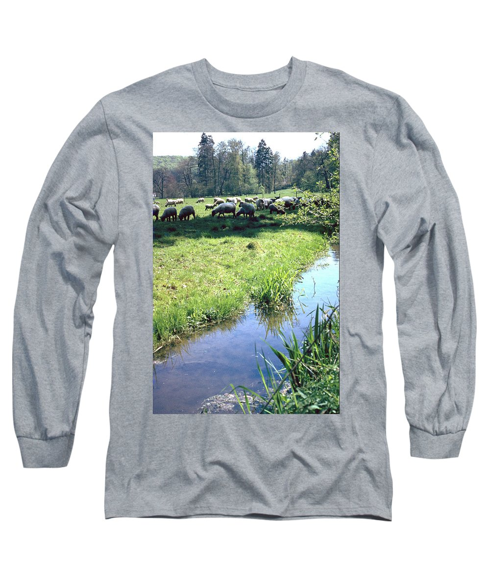 Sheep Long Sleeve T-Shirt featuring the photograph Sheep by Flavia Westerwelle