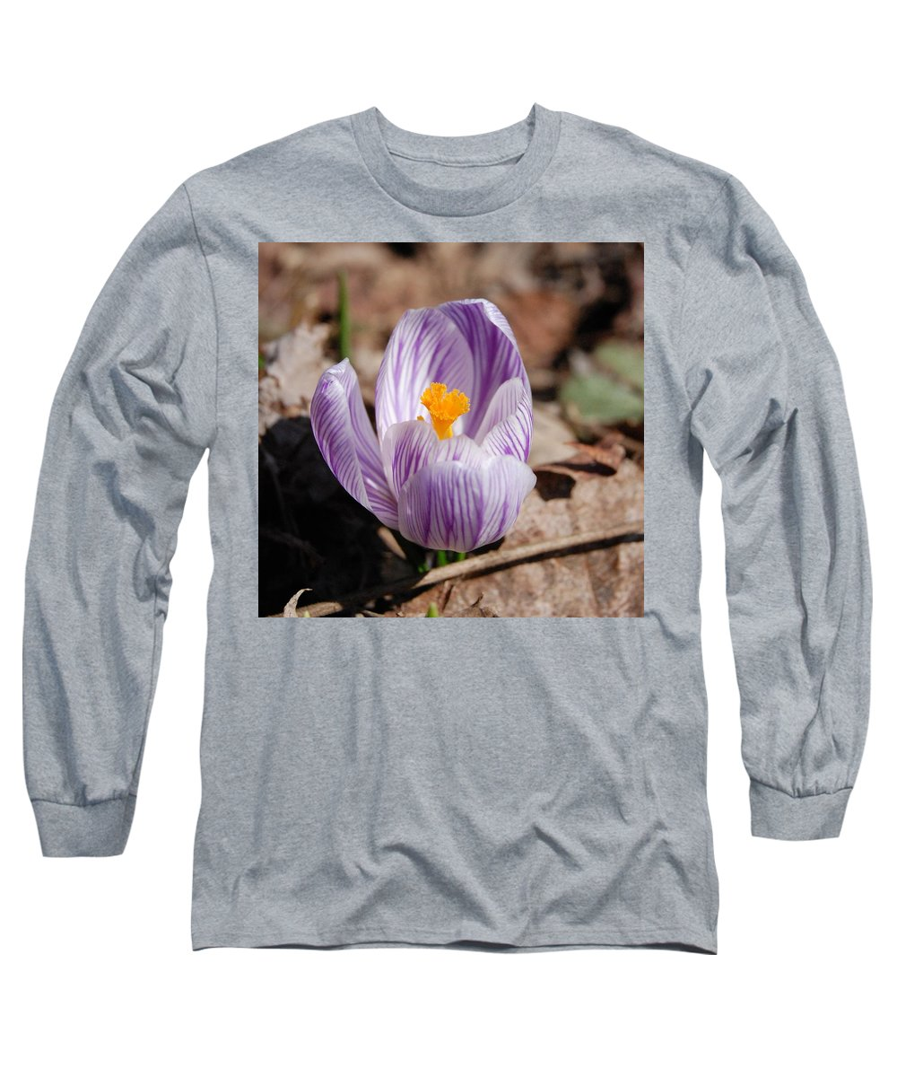 Digital Photography Long Sleeve T-Shirt featuring the photograph Striped Crocus by David Lane