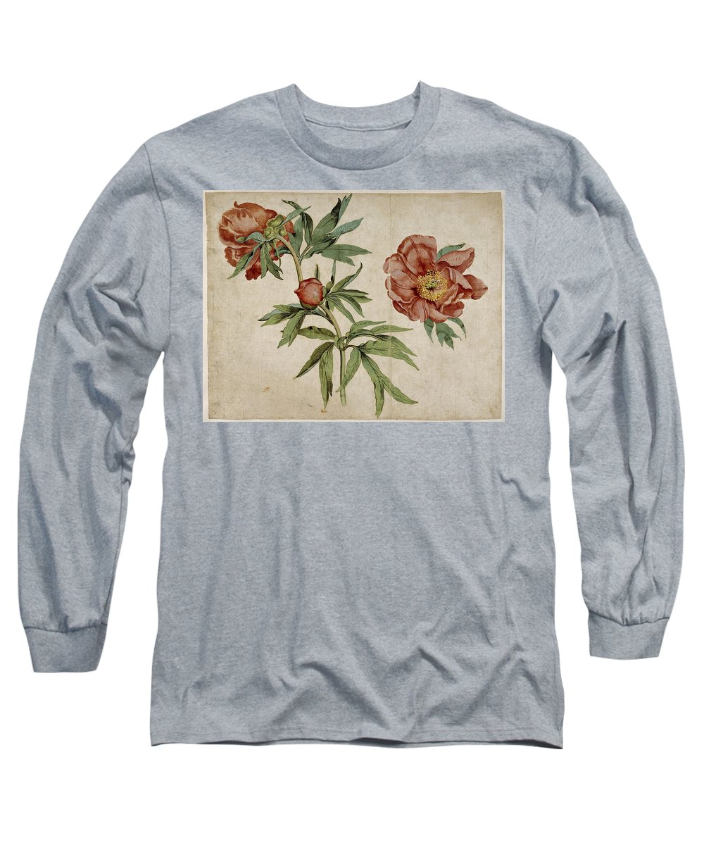 Martin Schongauer Long Sleeve T-Shirt featuring the drawing Study Of Peonies by Martin Schongauer