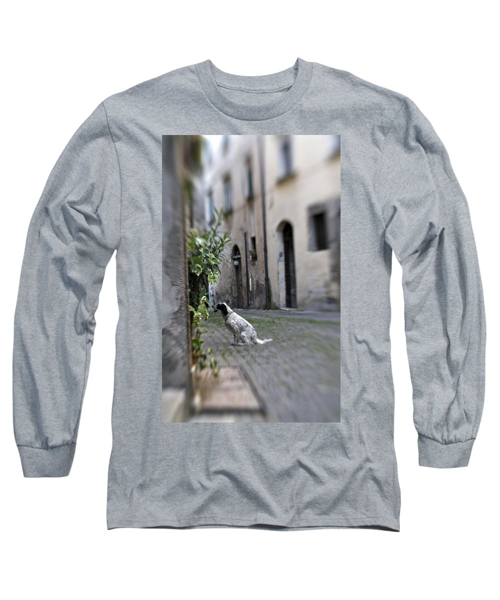 Dog Long Sleeve T-Shirt featuring the photograph Waiting by Marilyn Hunt