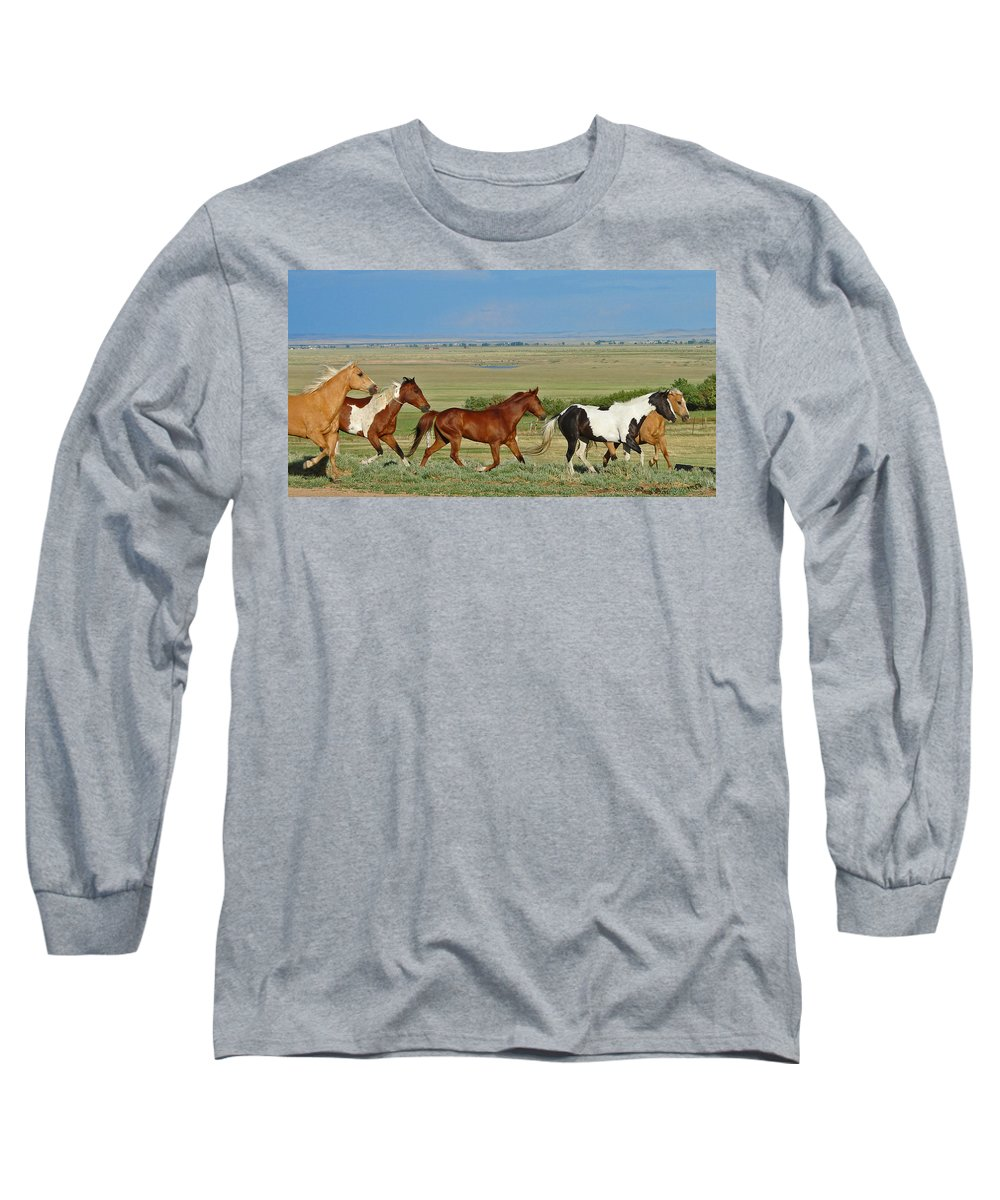 Herd Long Sleeve T-Shirt featuring the photograph Wild Horses Wyoming by Heather Coen