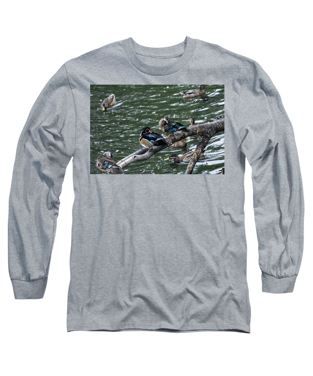 Duck Long Sleeve T-Shirt featuring the photograph Resting Ducks by Rob Olivo