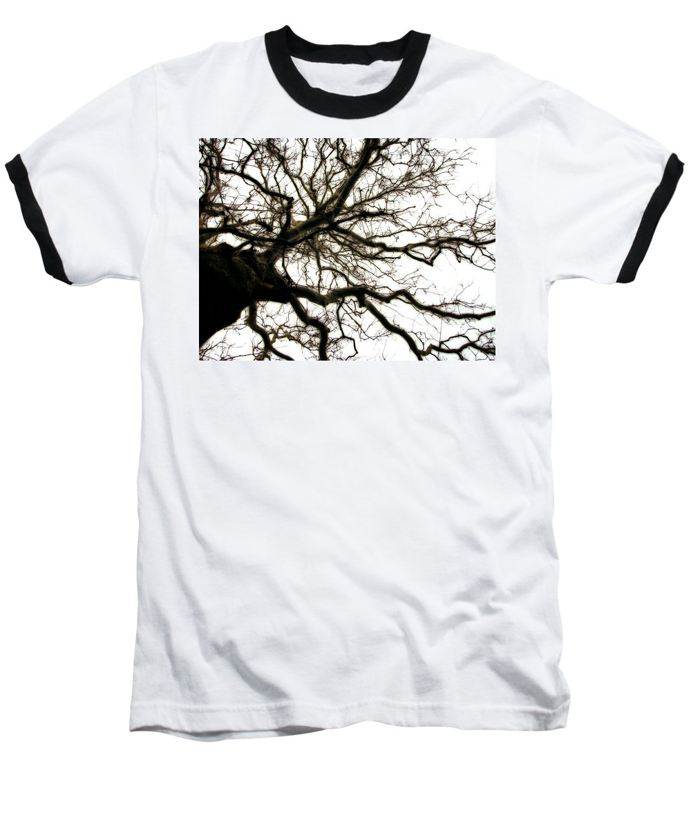 Branches Baseball T-Shirt featuring the photograph Branches by Michelle Calkins