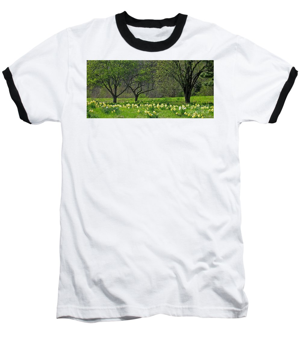 Spring Baseball T-Shirt featuring the photograph Daffodil Meadow by Ann Horn