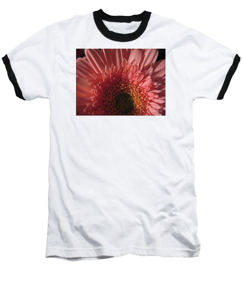 Flower Baseball T-Shirt featuring the photograph Dark Radiance by Ann Horn