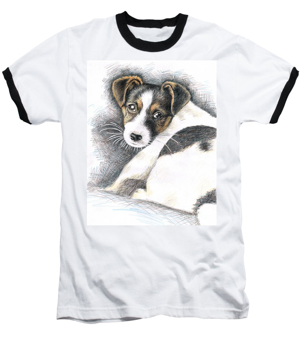 Dog Baseball T-Shirt featuring the drawing Jack Russell Puppy by Nicole Zeug