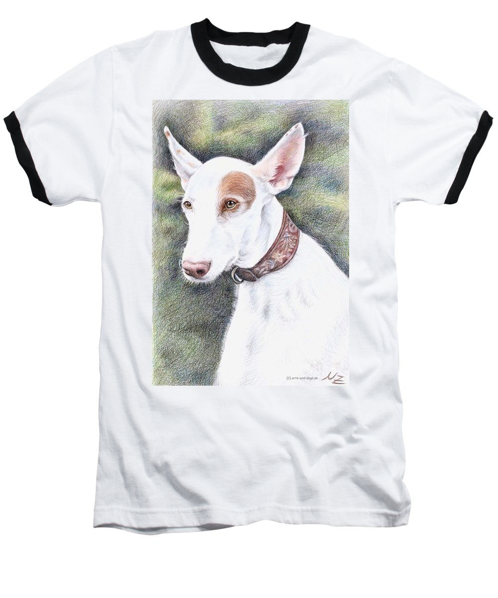 Dog Baseball T-Shirt featuring the drawing Podenco Ibicenco by Nicole Zeug