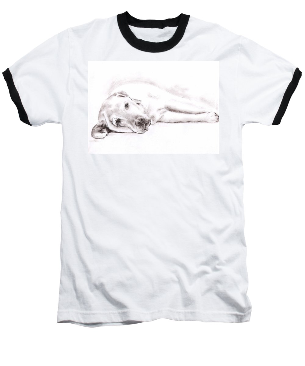 Dog Baseball T-Shirt featuring the drawing Tired Labrador by Nicole Zeug