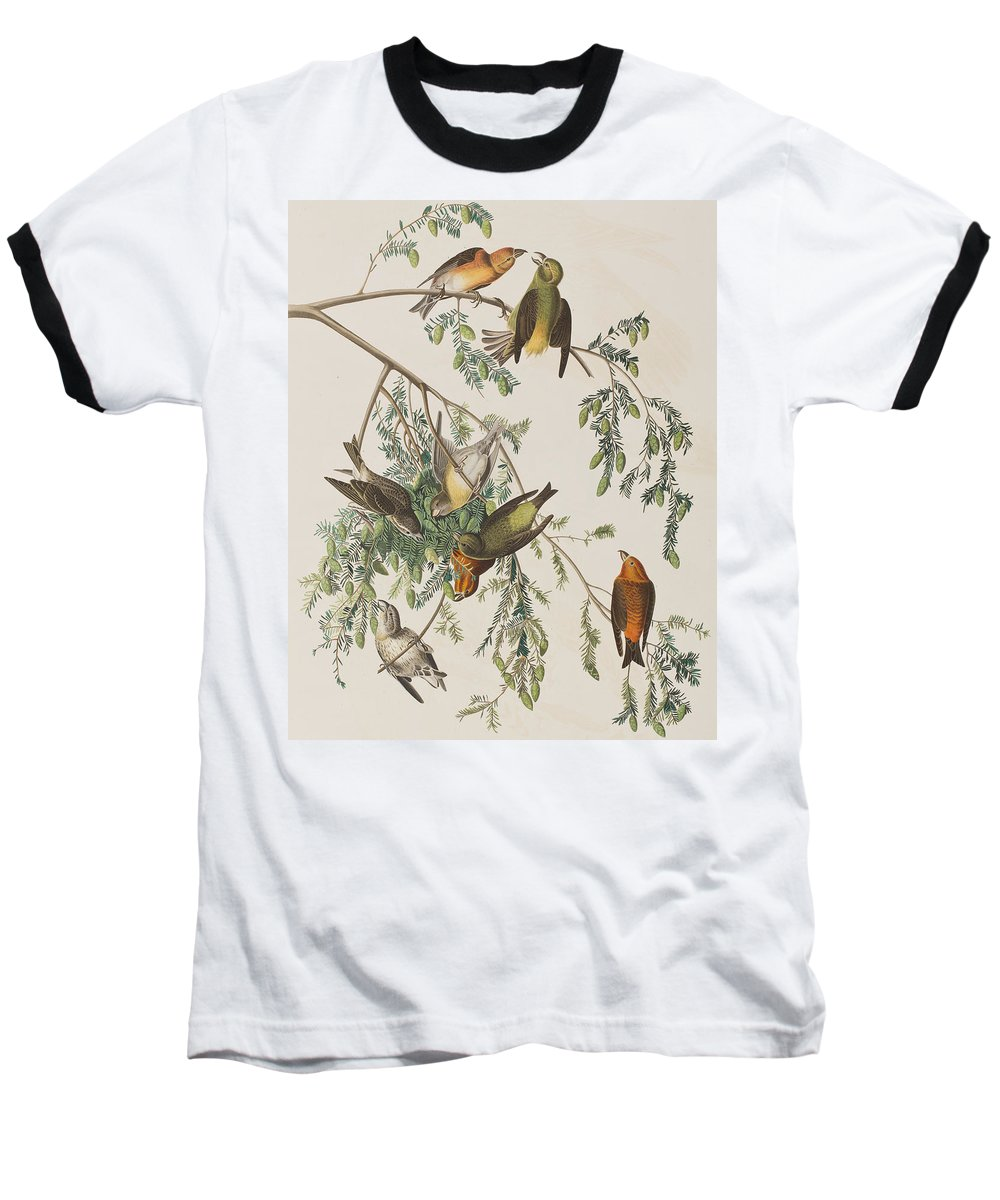 Crossbill Baseball T-Shirts