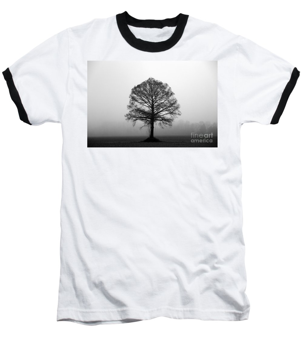 Tree Baseball T-Shirt featuring the photograph The Tree by Amanda Barcon