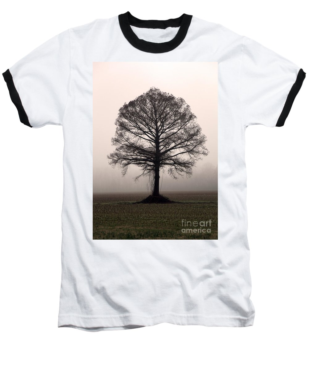 Trees Baseball T-Shirt featuring the photograph The Tree by Amanda Barcon