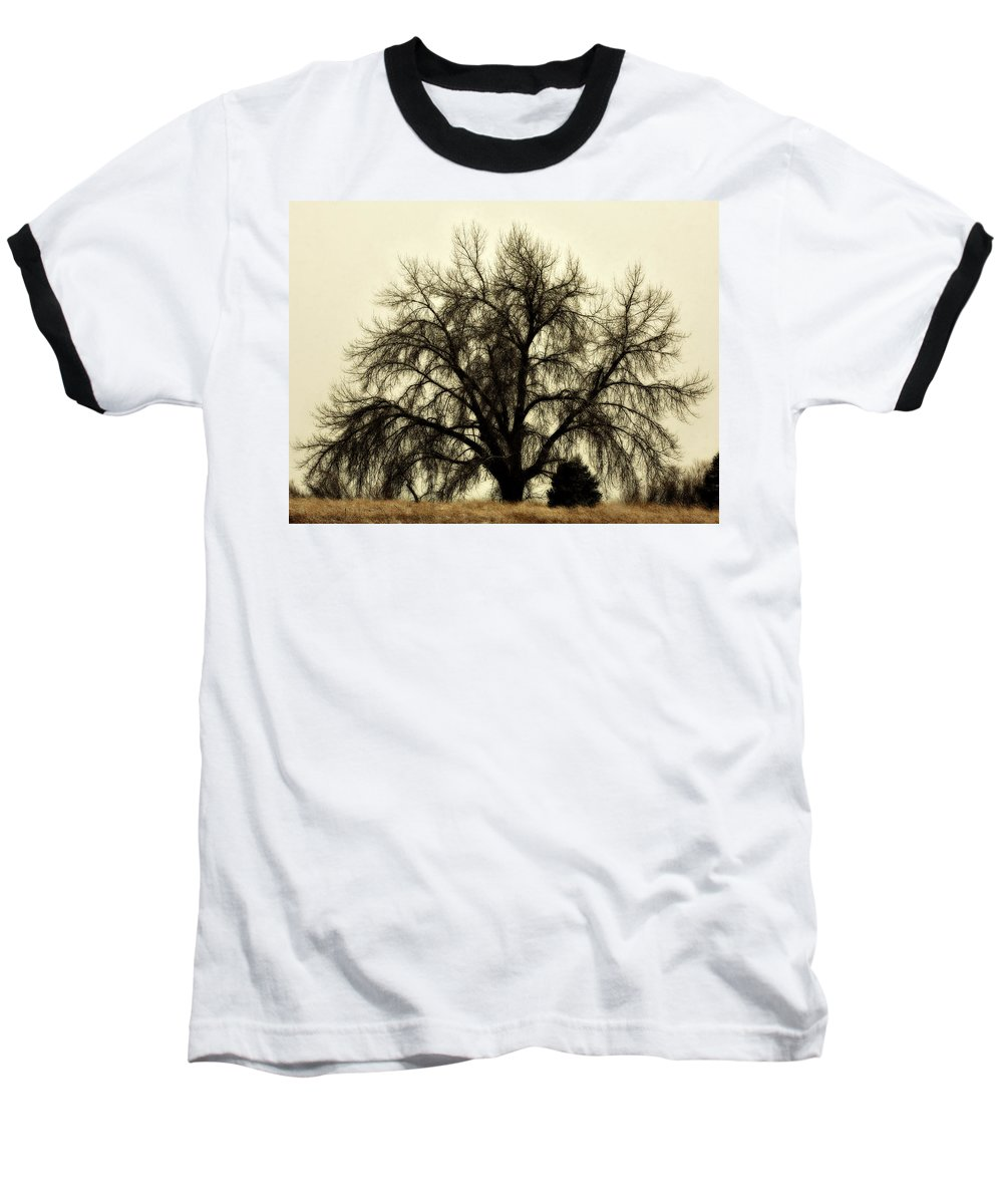 Tree Baseball T-Shirt featuring the photograph A Winter's Day by Marilyn Hunt