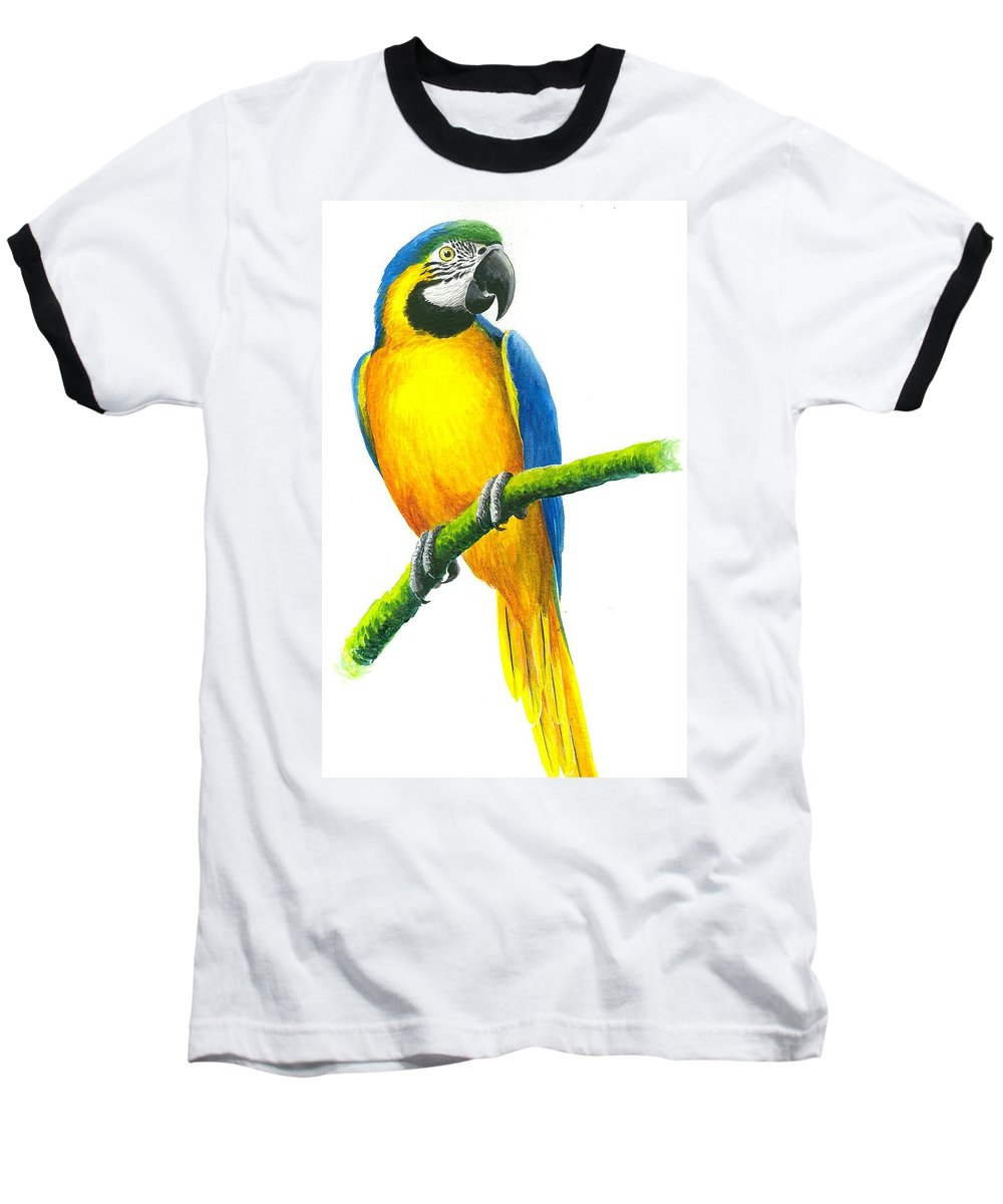 Chris Cox Baseball T-Shirt featuring the painting Blue And Gold Macaw by Christopher Cox