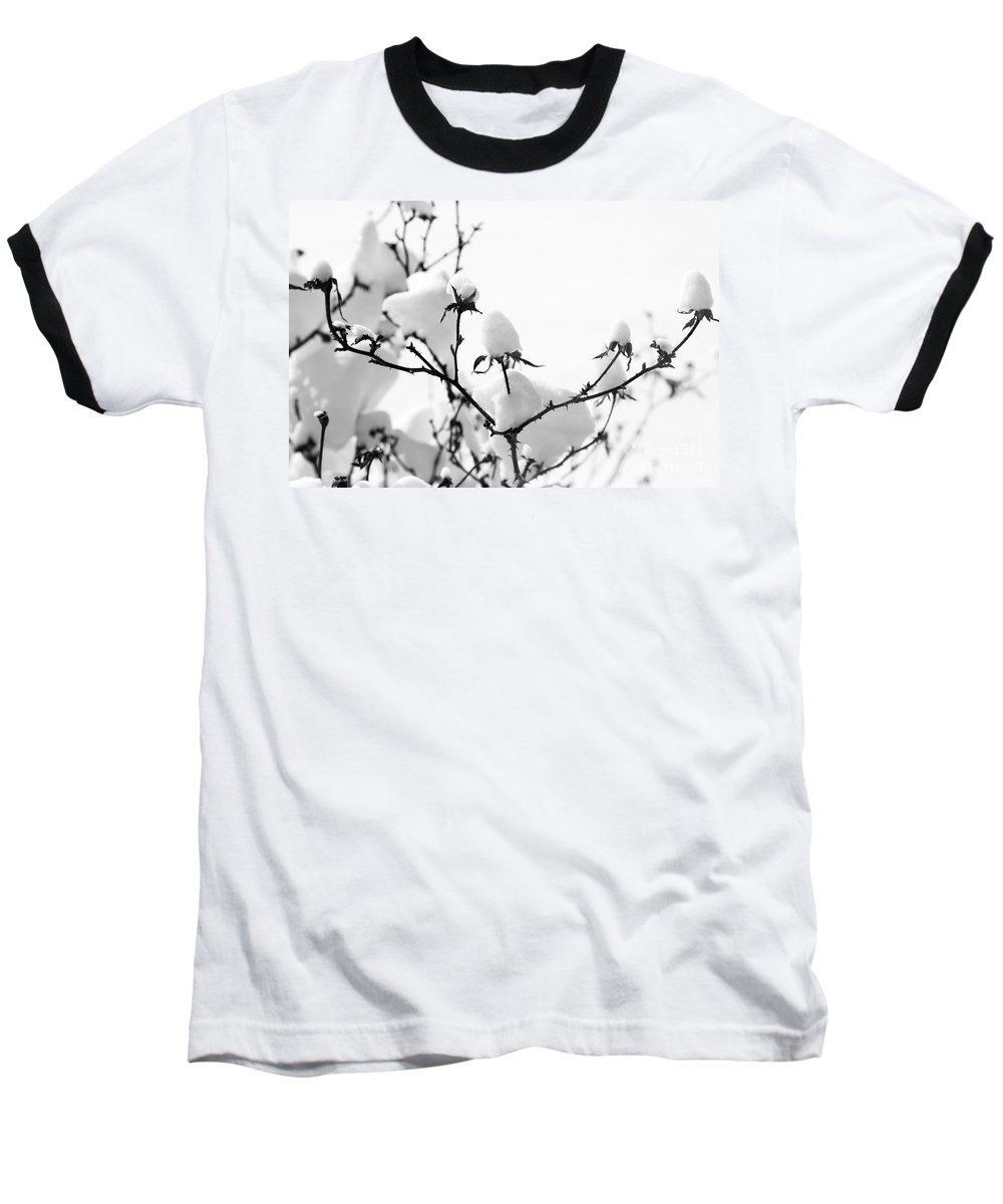 Branches Baseball T-Shirt featuring the photograph Branches by Amanda Barcon