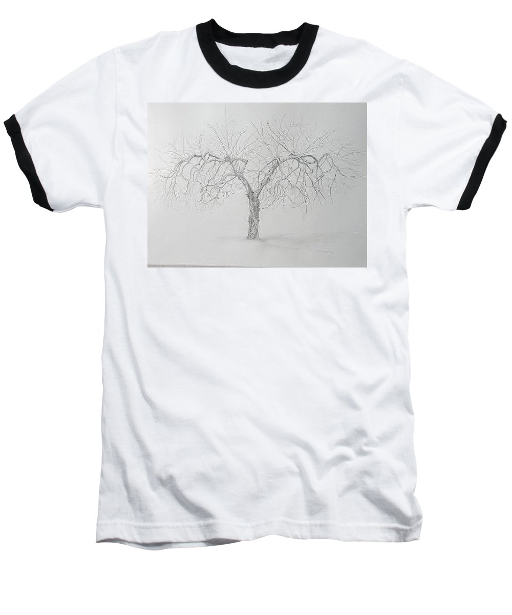 Cortland Apple Tree Baseball T-Shirt featuring the drawing Cortland Apple by Leah Tomaino