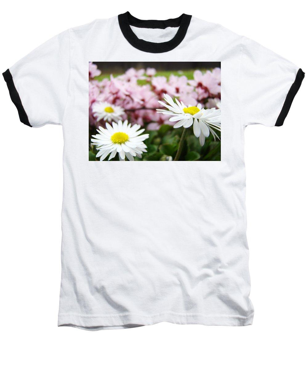 Daisies Baseball T-Shirt featuring the photograph Daisies Flowers Art Prints Spring Flowers Artwork Garden Nature Art by Baslee Troutman