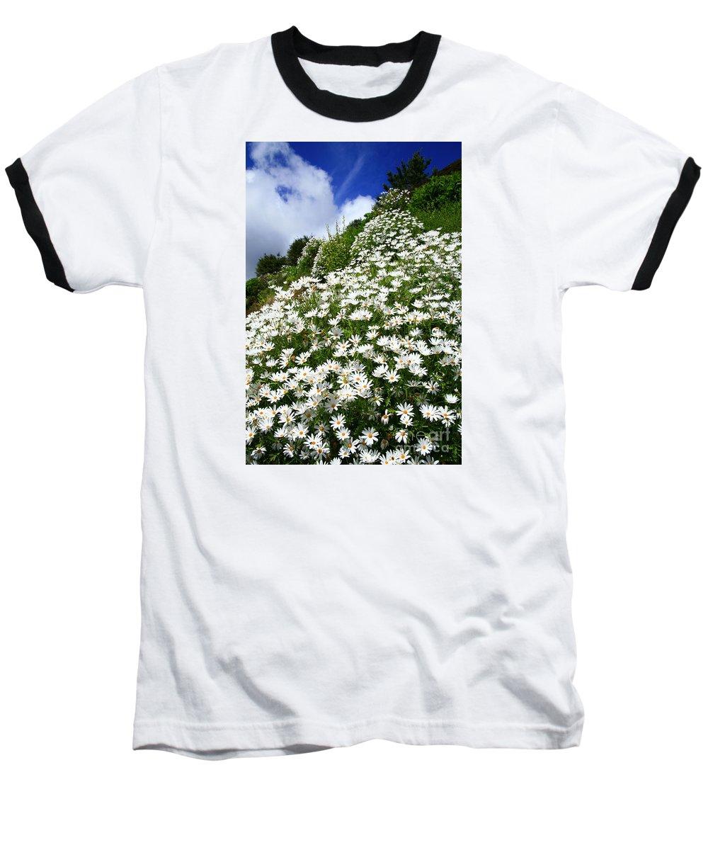 Countryside Baseball T-Shirt featuring the photograph Daisies by Gaspar Avila