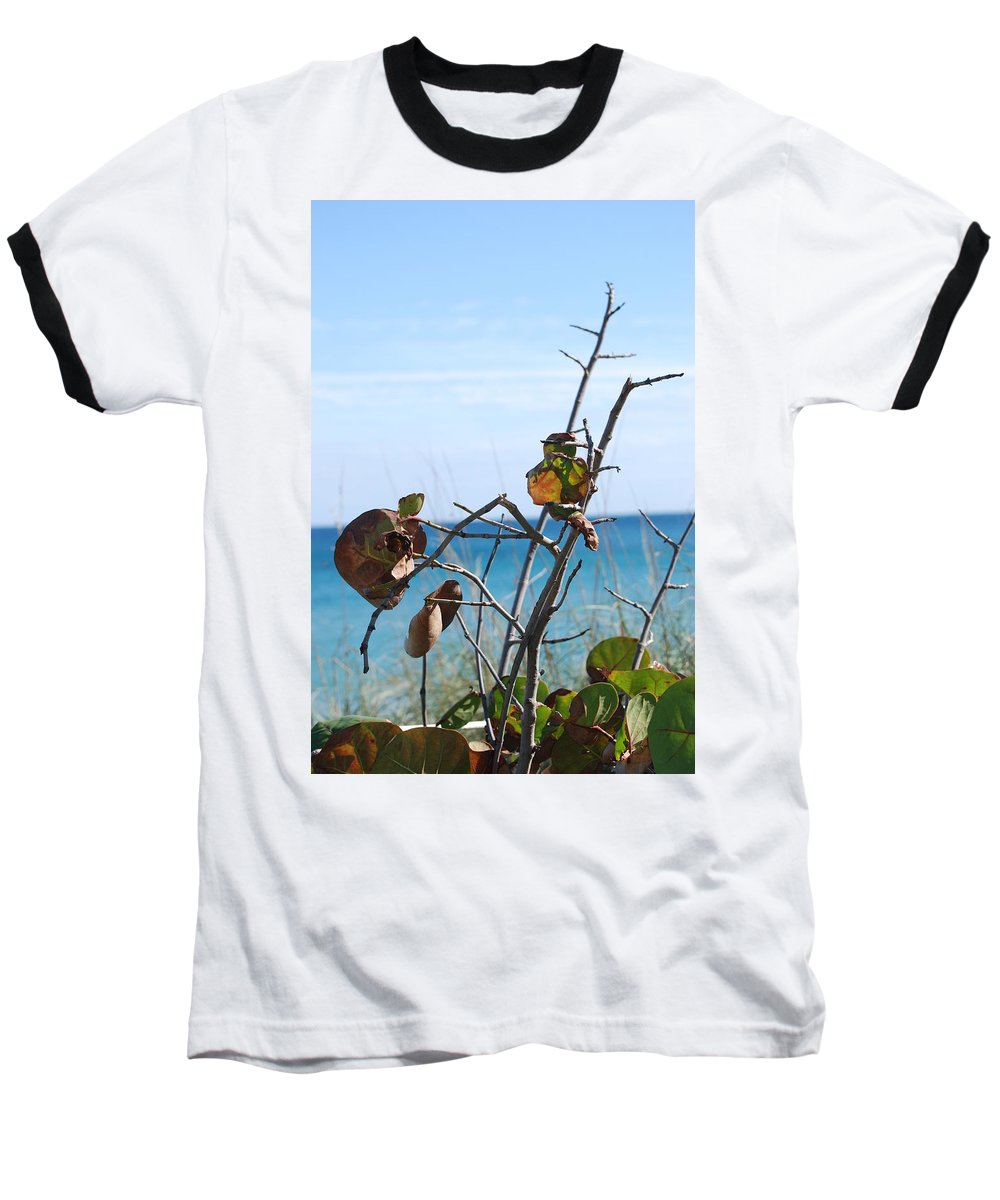 Ocean Baseball T-Shirt featuring the photograph Dune Plants by Rob Hans