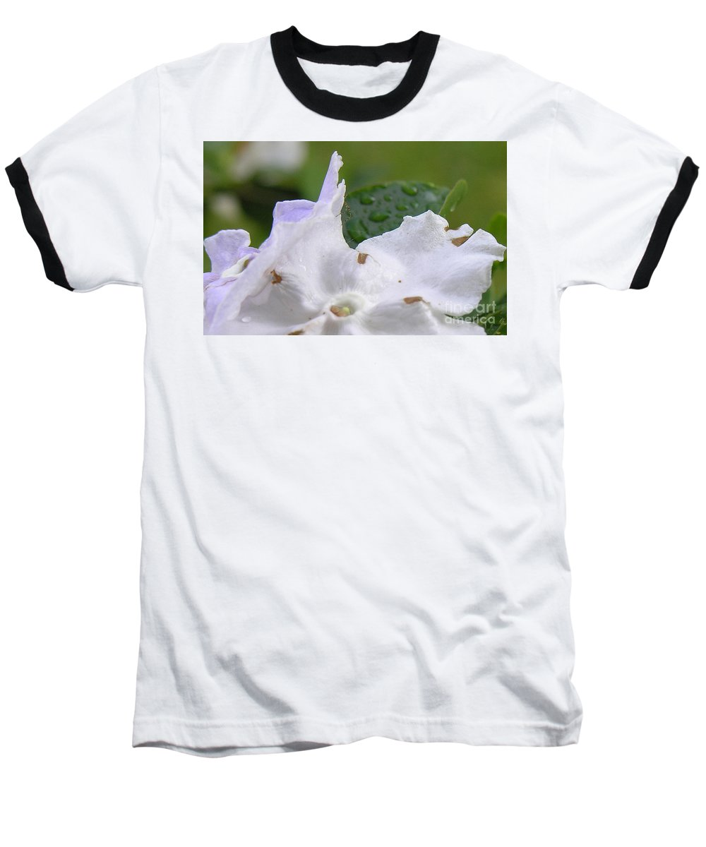 Flower Baseball T-Shirt featuring the photograph Easter Surprise by Richard Rizzo