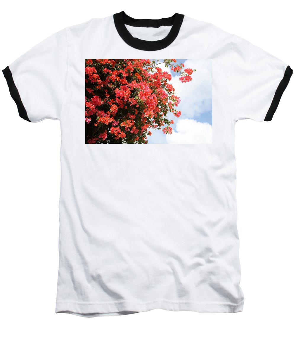 Hawaii Baseball T-Shirt featuring the photograph Flowering Tree by Nadine Rippelmeyer