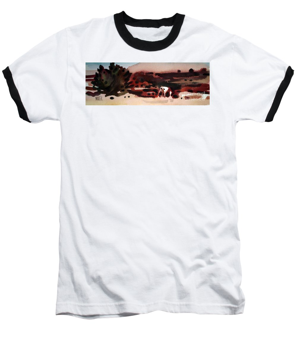 Horse Baseball T-Shirt featuring the painting Grazing Pinto by Donald Maier