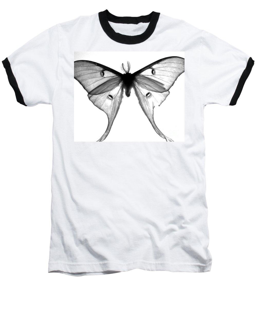 Moth Baseball T-Shirt featuring the photograph Moth by Amanda Barcon