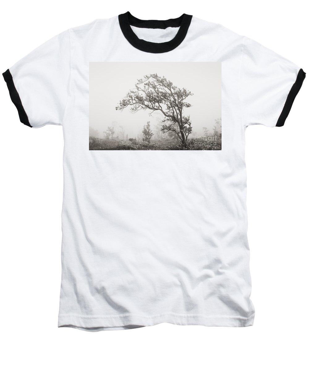 91156fa9 Art Medium Baseball T-Shirt featuring the photograph Ohia Lehua Tree by  Greg Vaughn -