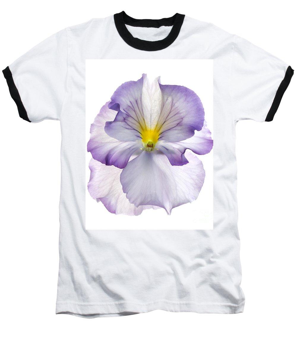 Pansy Genus Viola Baseball T-Shirt featuring the photograph Pansy by Tony Cordoza