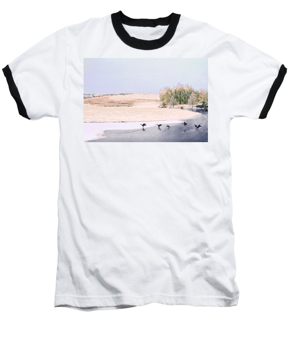 Landscape Baseball T-Shirt featuring the photograph Powell Gardens In Winter by Steve Karol