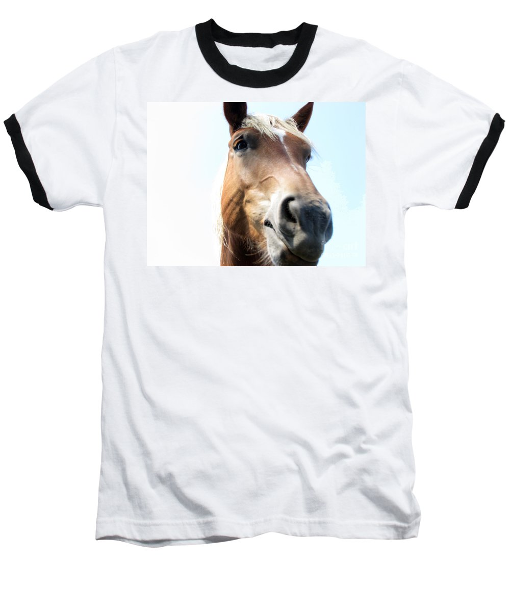 Horse Baseball T-Shirt featuring the photograph Really by Amanda Barcon