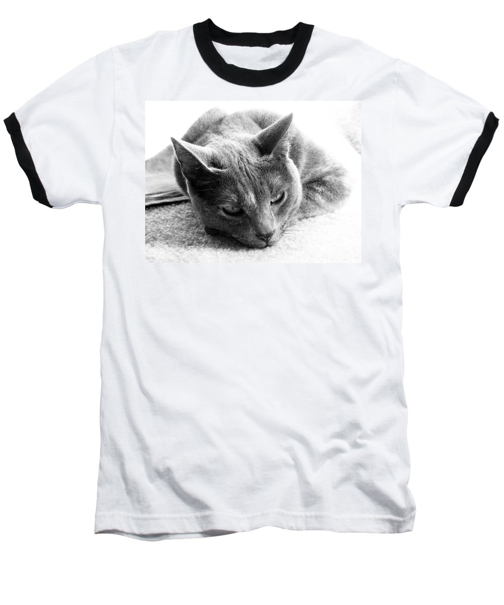 Cats Baseball T-Shirt featuring the photograph Resting by Amanda Barcon