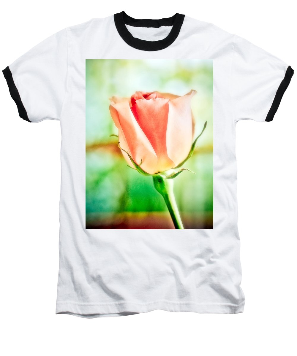 Rose Baseball T-Shirt featuring the photograph Rose In Window by Marilyn Hunt