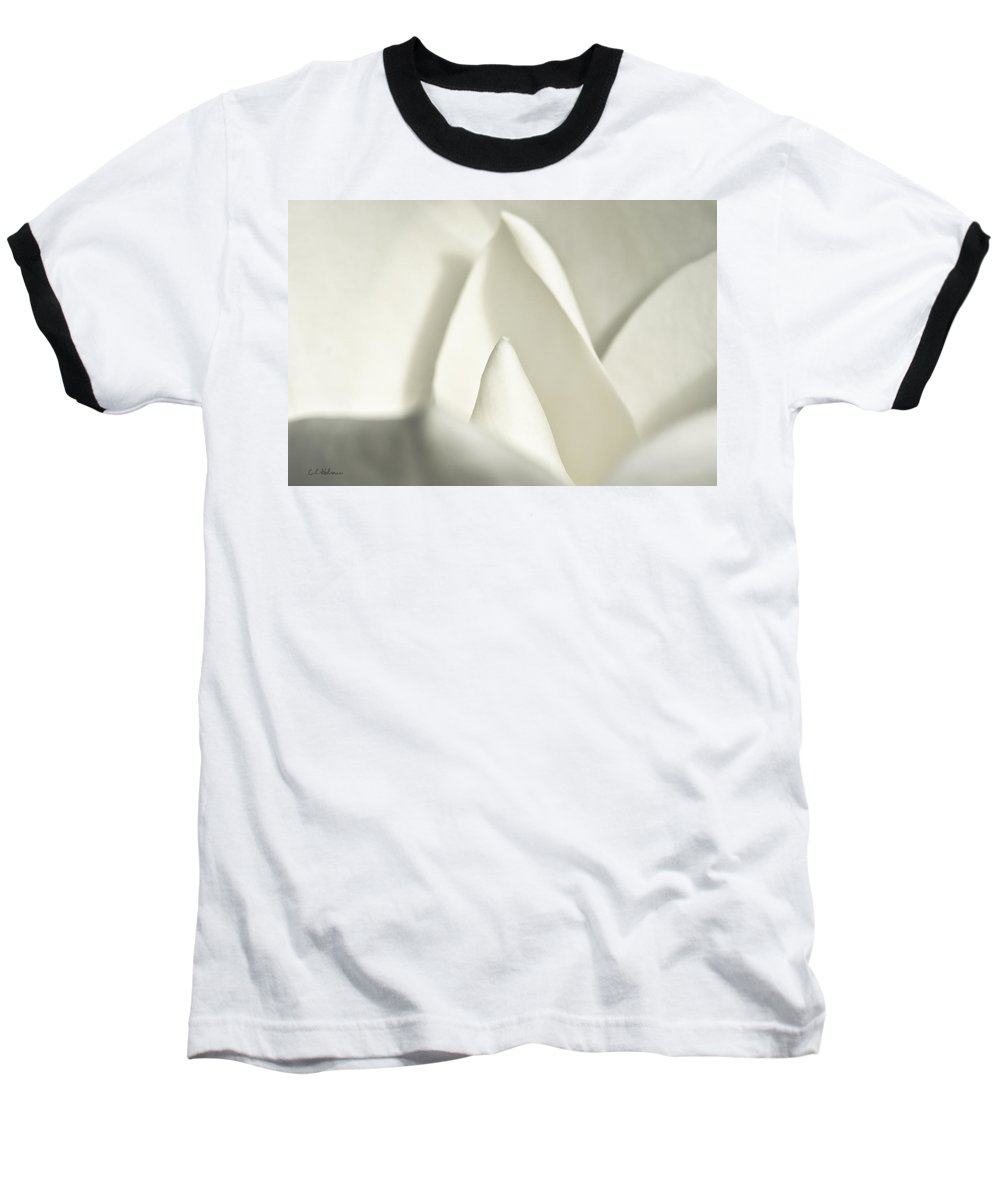 Magnolia Baseball T-Shirt featuring the photograph Soft Magnolia by Christopher Holmes