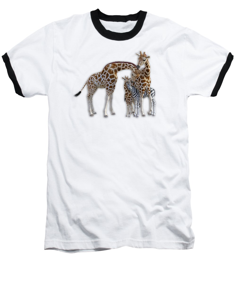 Giraffe Baseball T-Shirt featuring the digital art Sometimes You Have To Find The Right Spot To Fit In by Betsy Knapp