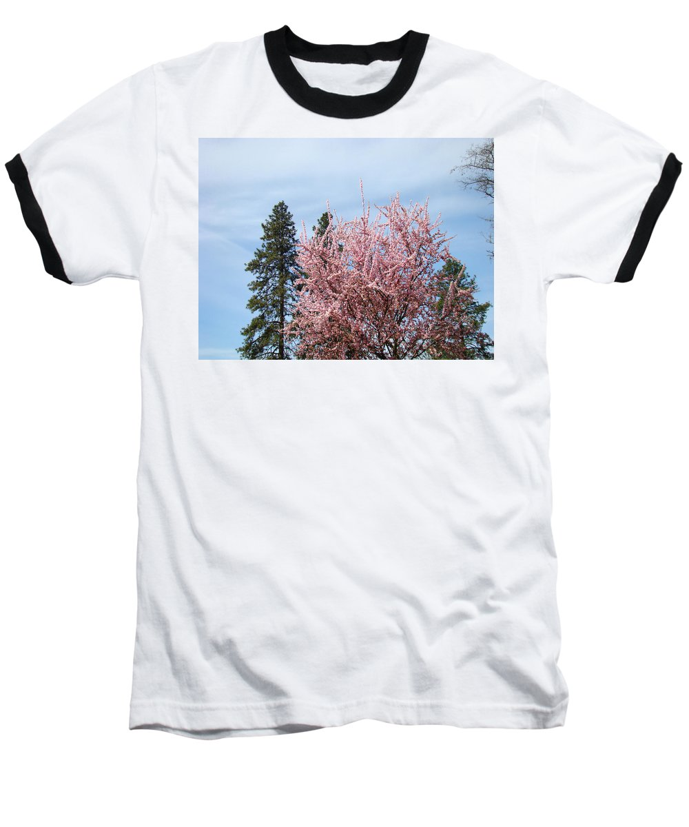 Trees Baseball T-Shirt featuring the photograph Spring Trees Bossoming Landscape Art Prints Pink Blossoms Clouds Sky by Baslee Troutman