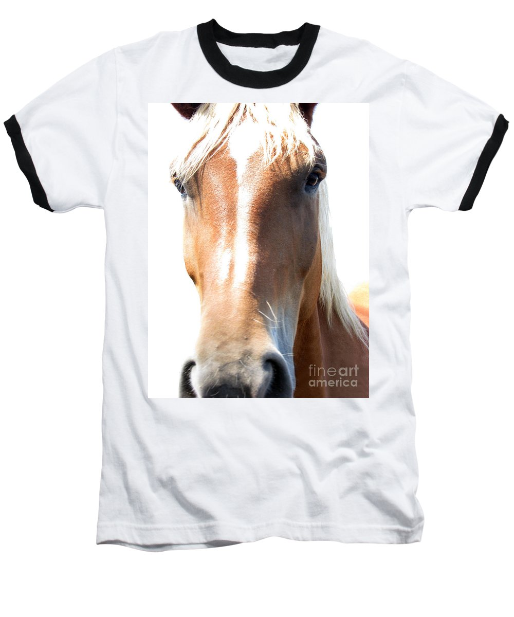Horse Baseball T-Shirt featuring the photograph Sweetie by Amanda Barcon