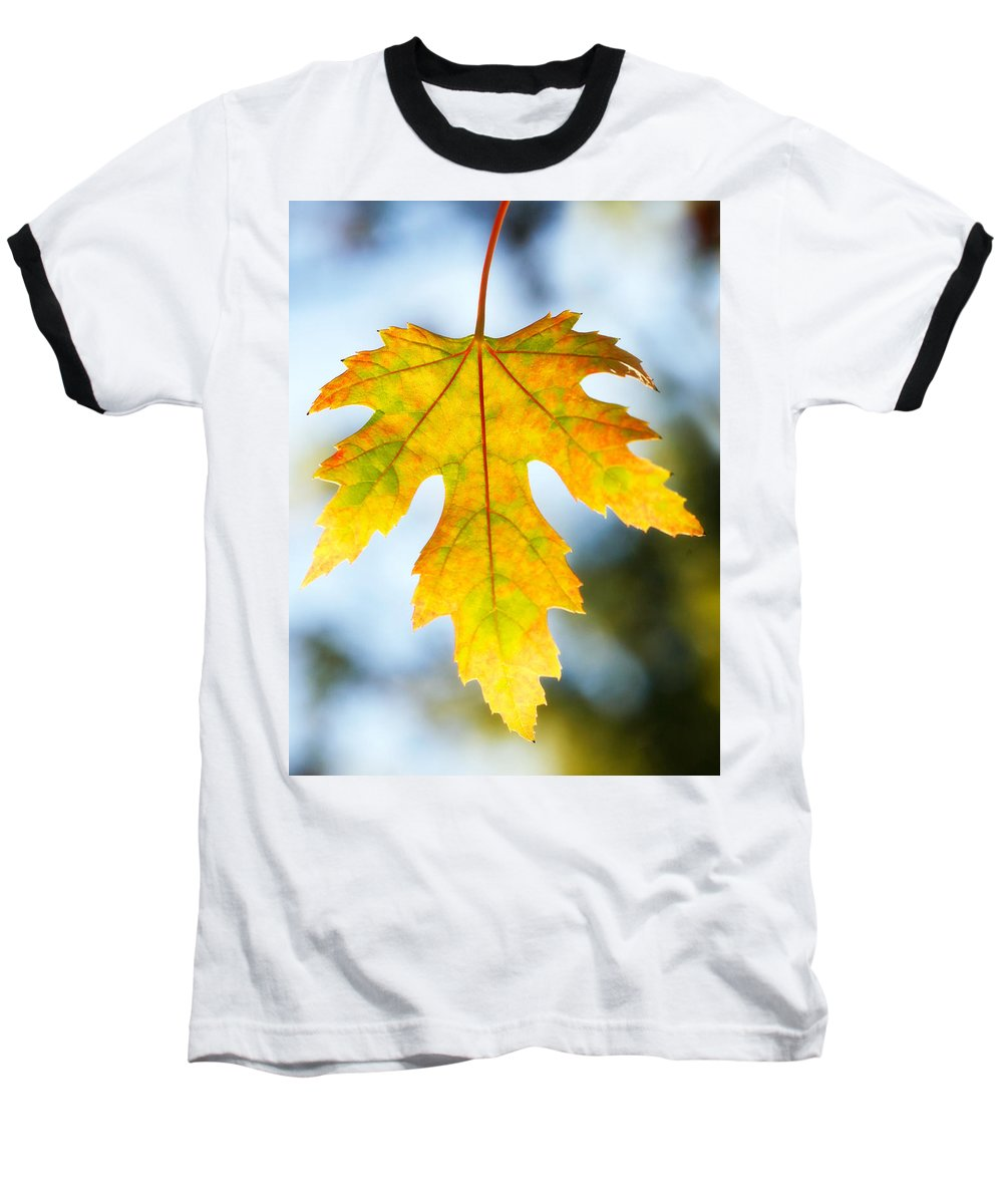 Maple Baseball T-Shirt featuring the photograph The Maple Leaf by Marilyn Hunt