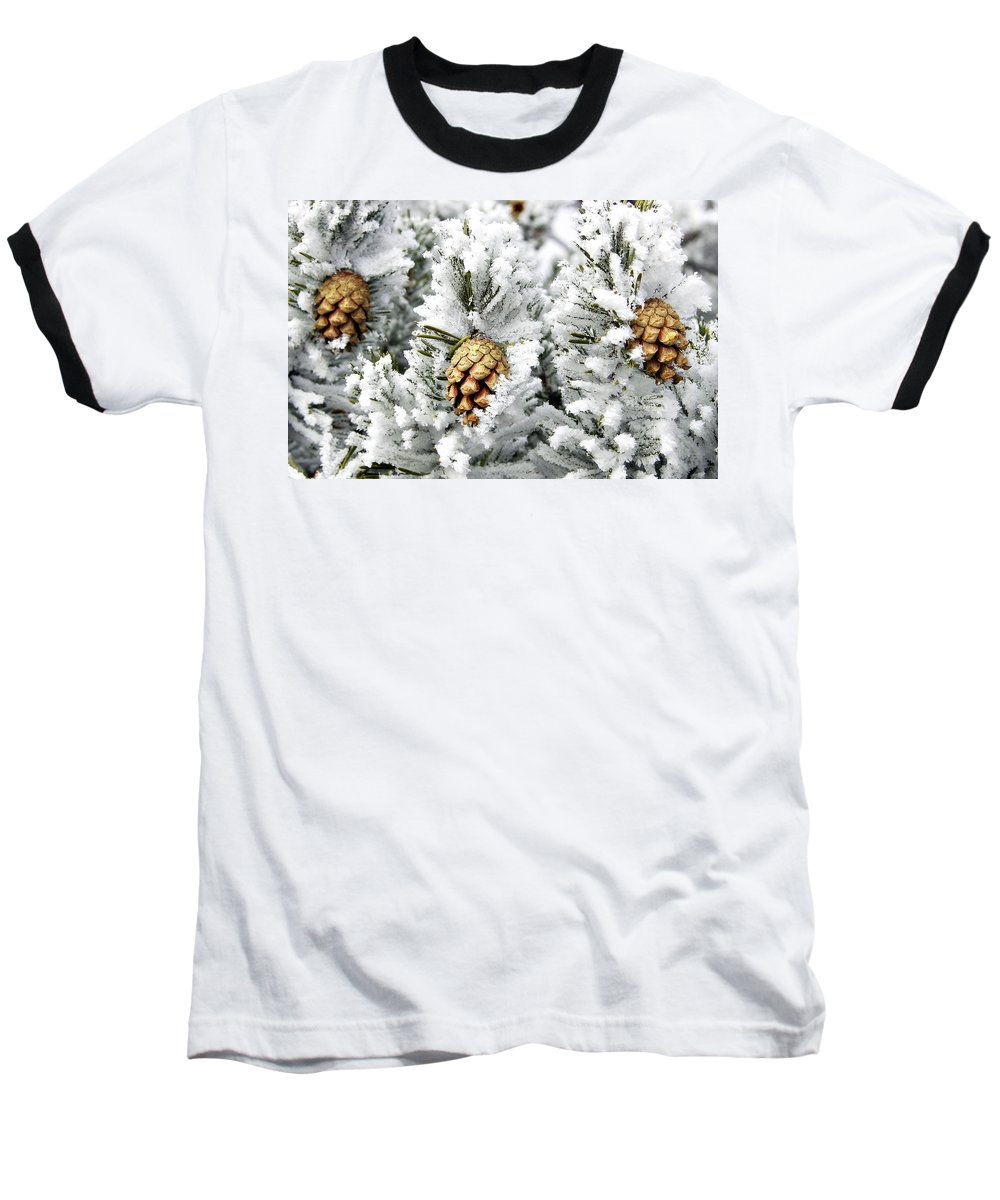 Frosty Baseball T-Shirt featuring the photograph Three Pinecones by Marilyn Hunt