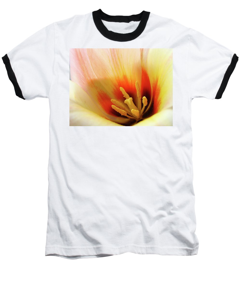 �tulips Artwork� Baseball T-Shirt featuring the photograph Tulip Flower Artwork 31 Tulips Flowers Macro Spring Floral Art Prints by Baslee Troutman