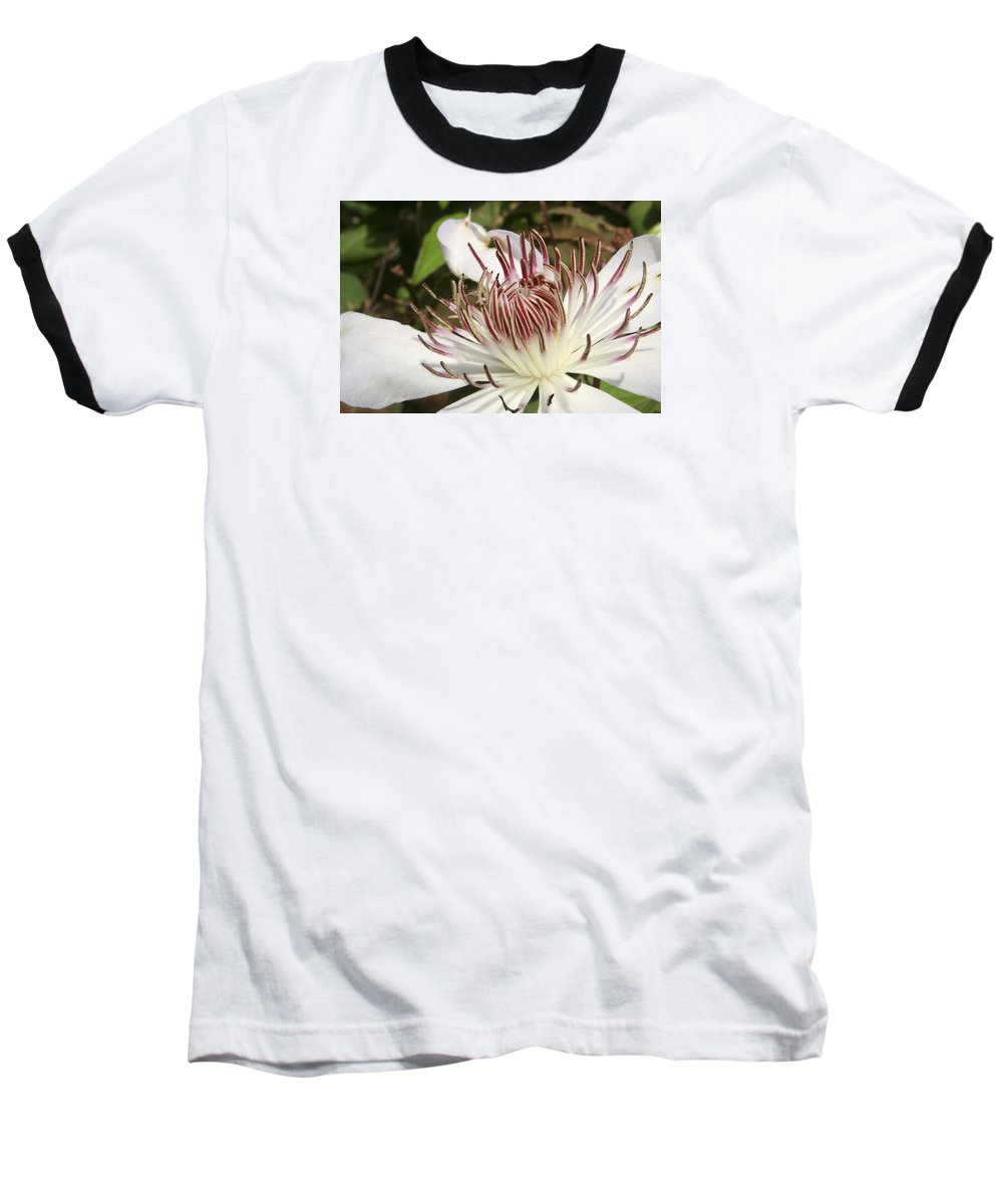 Clematis Baseball T-Shirt featuring the photograph White Clematis Henryi by Margie Wildblood