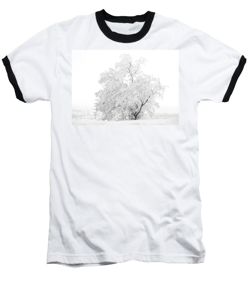 Snow Baseball T-Shirt featuring the photograph White On White by Marilyn Hunt