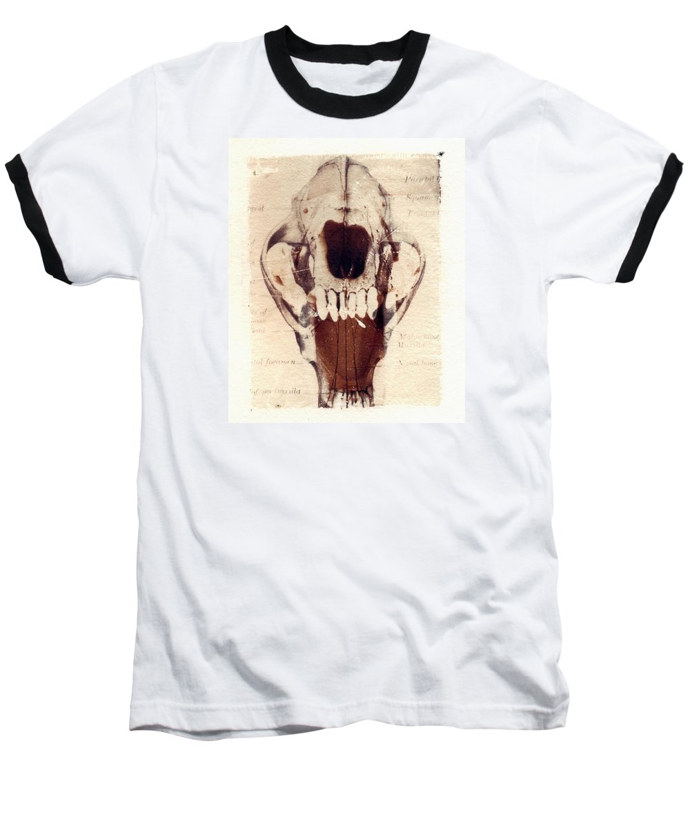 Polaroid Baseball T-Shirt featuring the photograph X Ray Terrestrial by Jane Linders