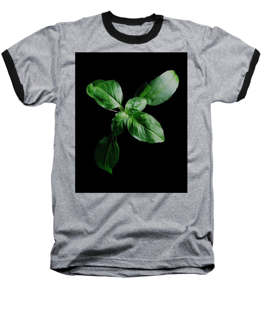 Herbs Baseball T-Shirt featuring the photograph A Sprig Of Basil by Romulo Yanes