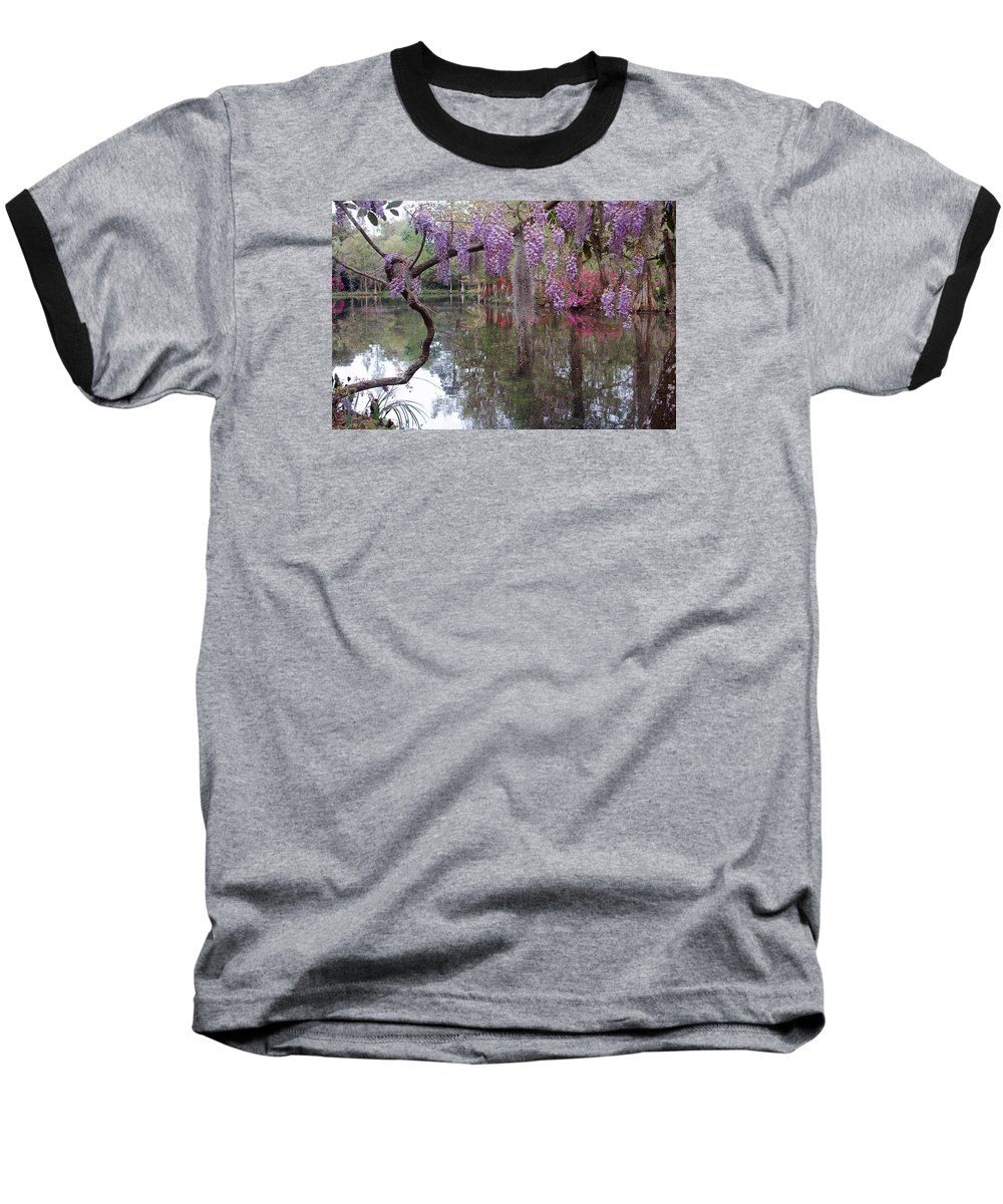 Wisteria Baseball T-Shirt featuring the photograph Magnolia Plantation Gardens Series II by Suzanne Gaff