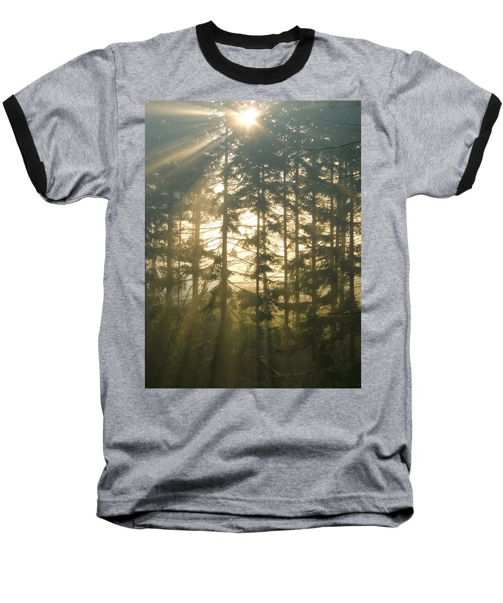 Nature Baseball T-Shirt featuring the photograph Light In The Forest by Daniel Csoka