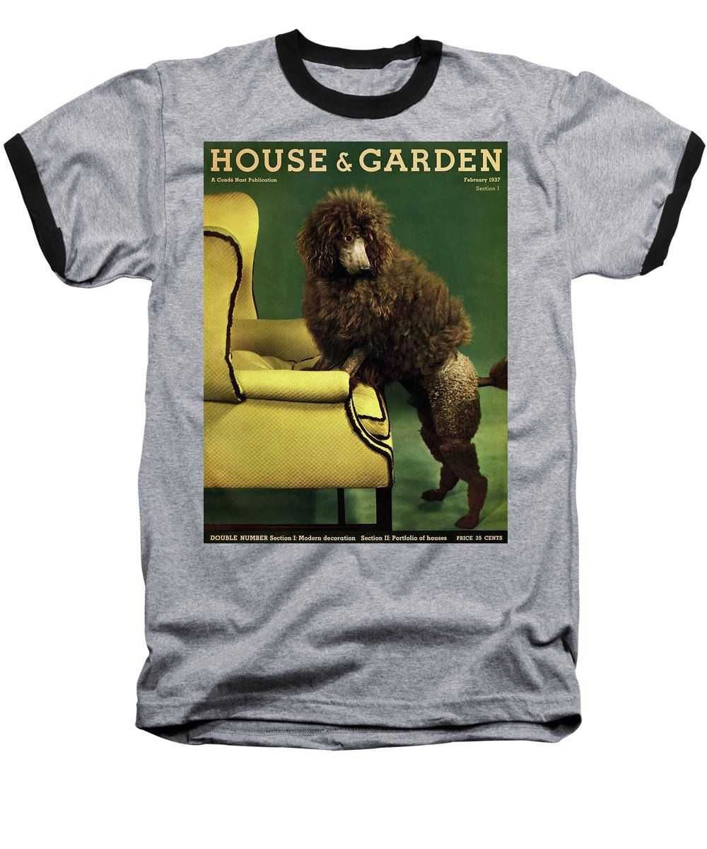 Illustration Baseball T-Shirt featuring the photograph A House And Garden Cover Of A Poodle by Anton Bruehl