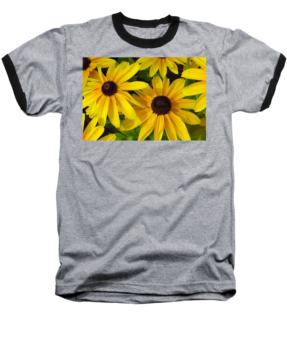 Black Eyed Susan Baseball T-Shirt featuring the photograph Black Eyed Susans by Suzanne Gaff
