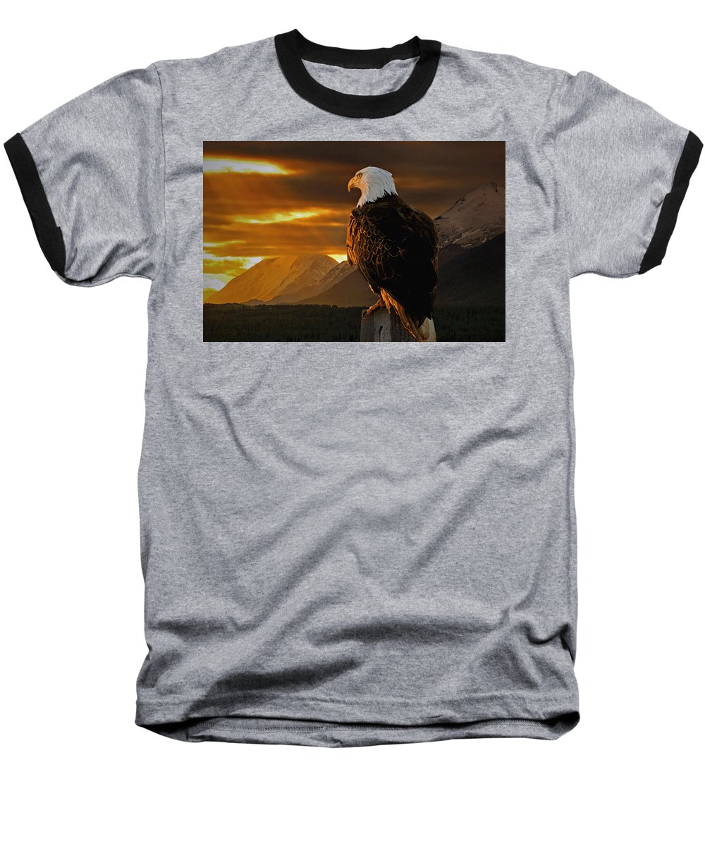 Eagle Baseball T-Shirt featuring the photograph Domain by Ron Day